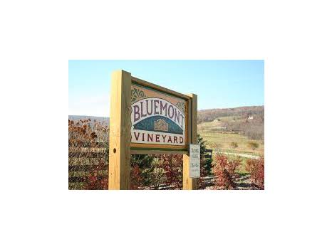 Bluemont Experience Package