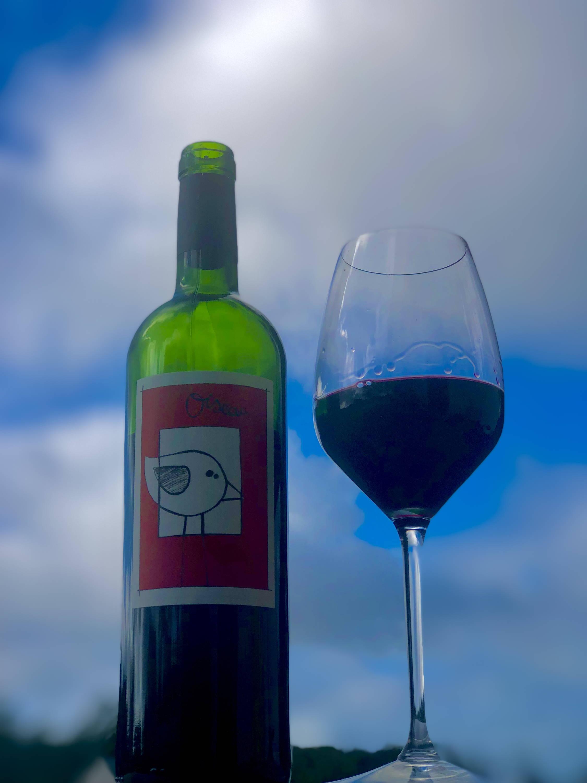 france, vin nature, rawwine, organic wine, vin bio, vin sans intrants, bistro brute, vin rouge, vin blanc, rouge, blanc, nature, vin propre, vigneron, vigneron indépendant, domaine bio, biodynamie, vigneron nature , jenn buck, didier ferrier, corbières, colline de l'hirondelle, la joupatière, languedoc