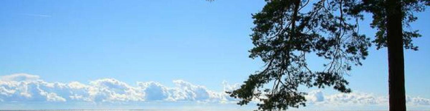 Финский Залив. Творческое наследие.