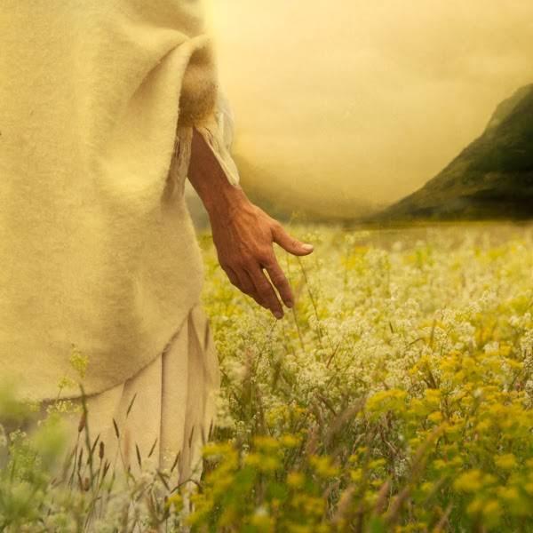 LDS art photo of Jess Christ walking through a field of lilies.