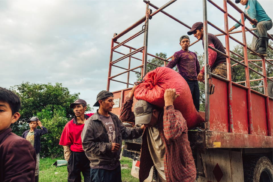 Coffee farmers at Finca Terrerito, Hondurase