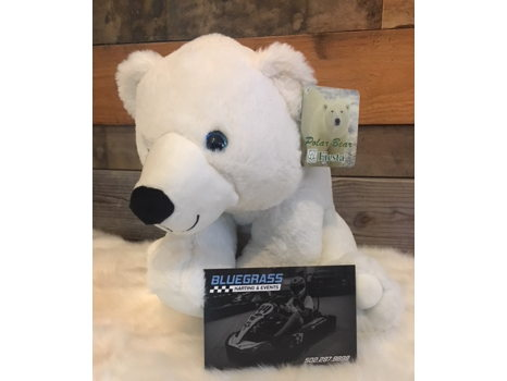 Karting & A Polar Bear