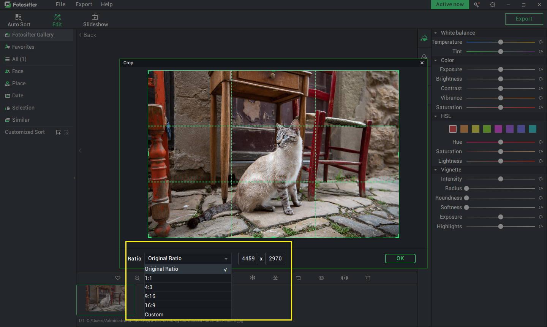 you can crop photos in preset ratios or customize the ratio