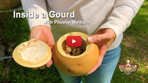 Watch Inside a Gourd with Phoebe Welburn
