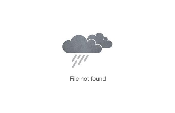 3-Days Tanzania Safari