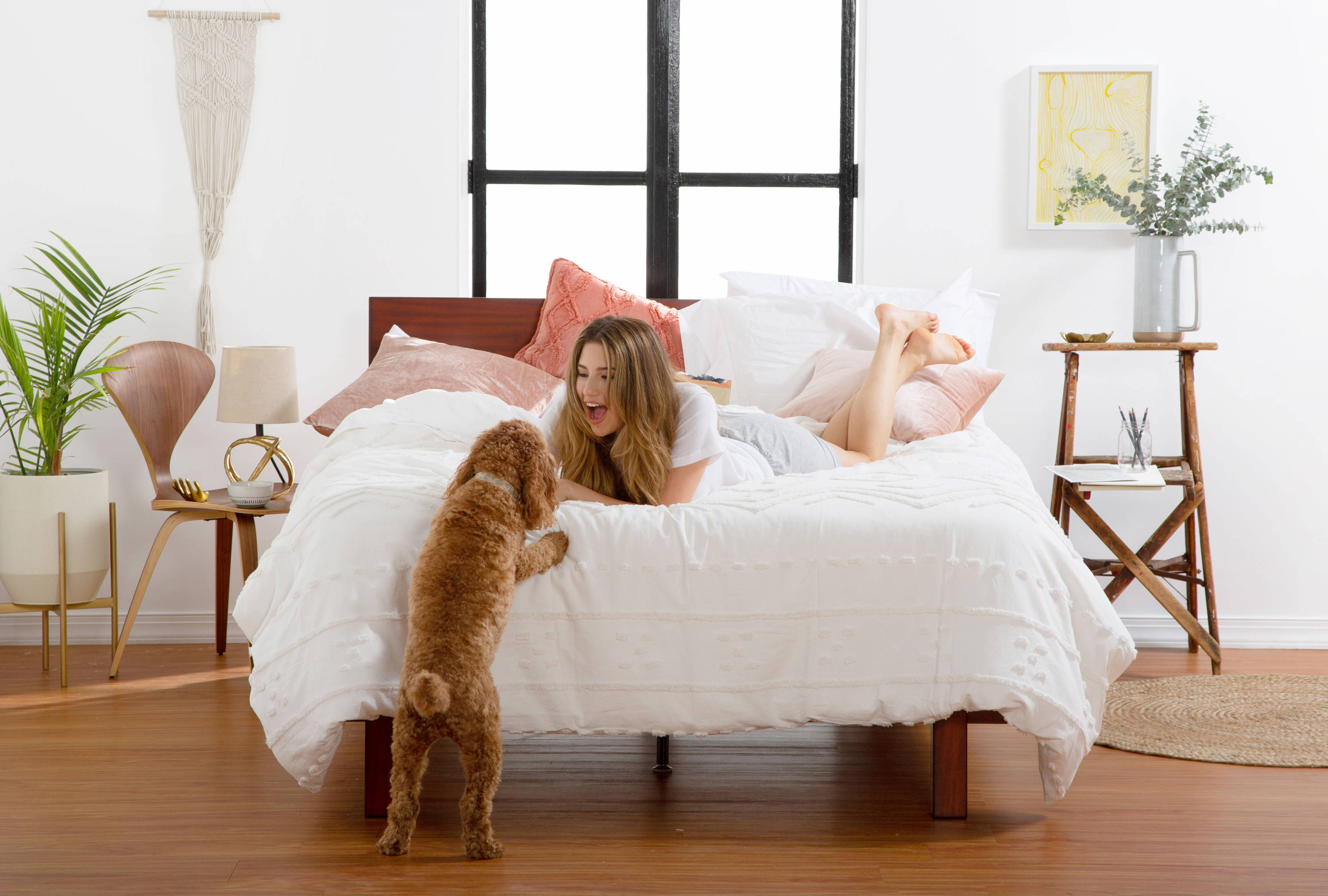 Person in a room laying in bed with a small dog trying to jump into the bed. Image