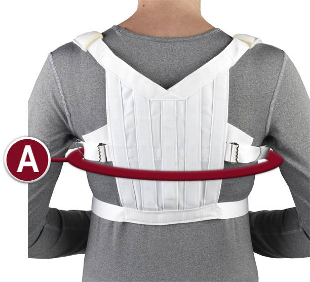 SHOULDER BRACE Measurement Location