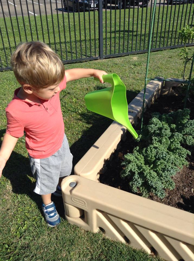 gardening, garden, infant, toddler, preschool, prekindergarten, kindergarten, daycare, childcare, Clear Lake, 77062