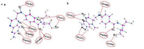 Fig. 2- Hydrogen bond interactions of drugs with furin
