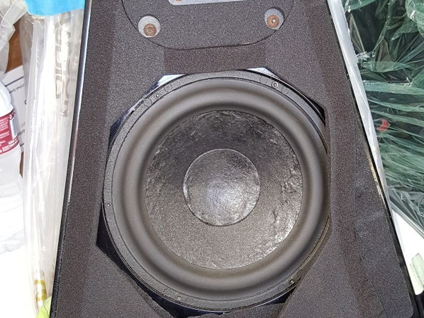 Wilson Audio Watt Puppy 5.1 Black New woofer surrounds and new Diffraction pads