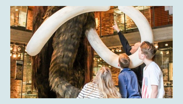 wasserschloss werdingen mammut schauen