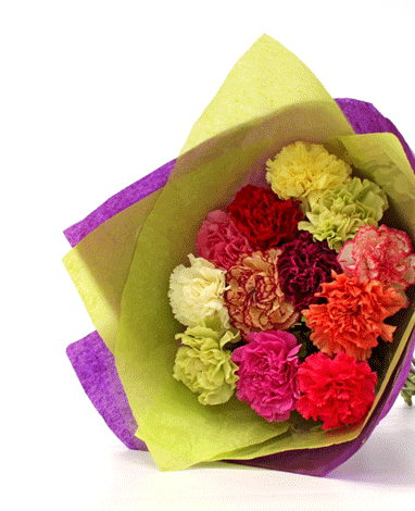 HF Special Mix Carnations