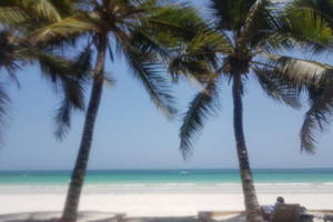 The Prettiest Beach in Africa
