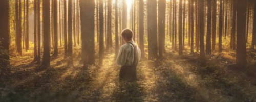 Panoramic image of Joseph Smith kneeling in a sunlight forest.
