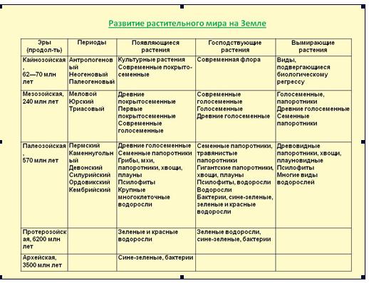 русский стандарт как узнать решение по кредиту
