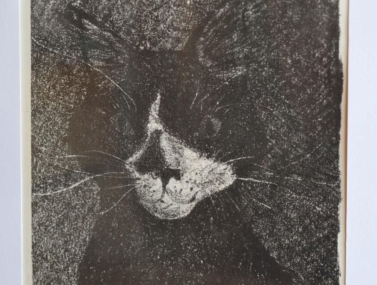 """Литография """"Чёрный кот"""" в раме с паспарту под стеклом"""