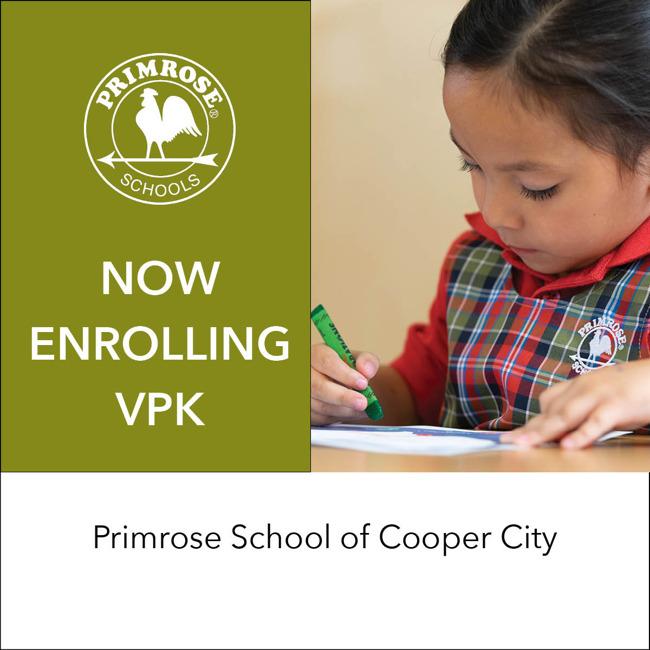 VPK website graphic