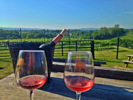Barrel Oak Winery Wine Tasting Package for Eight