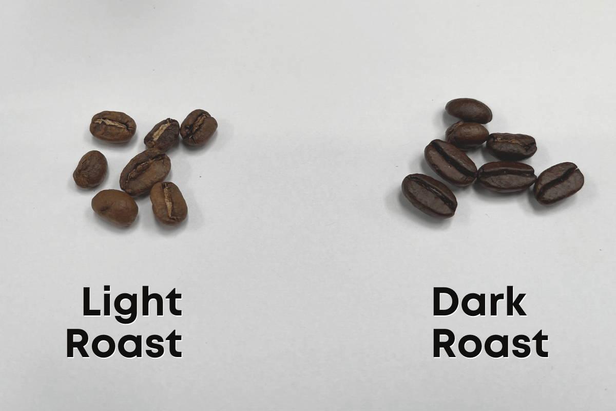 Light vs. Dark Roasts