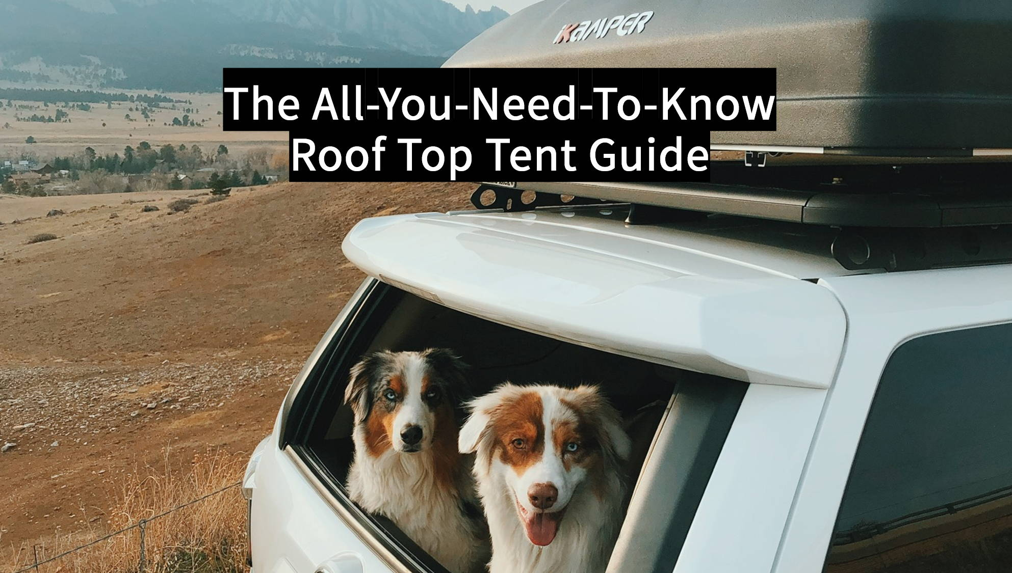 The All You Need To Know RTT Guide