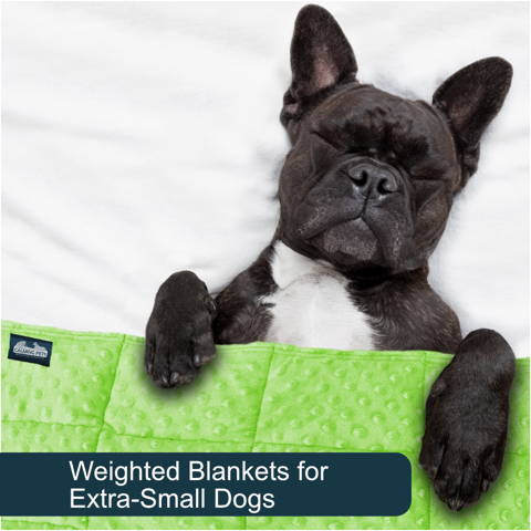 Weighted blankets for extra-small dogs