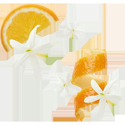 Orangenblüte Augenpflege