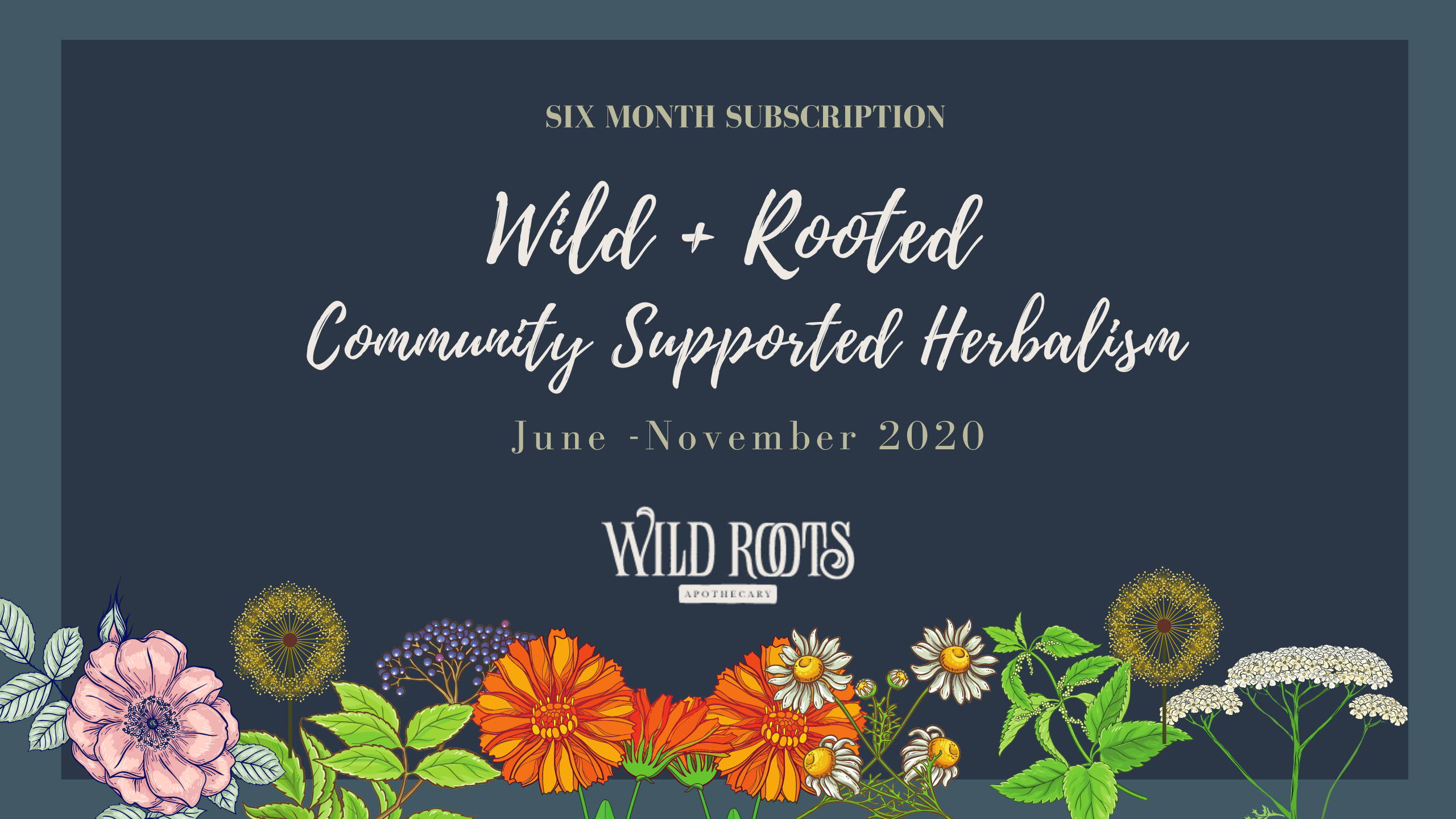 wild-roots-apothecary-herbal-immersion