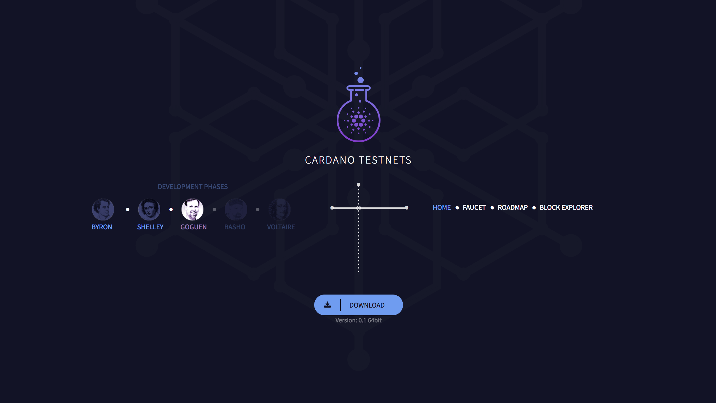 Cardano Testnets Website
