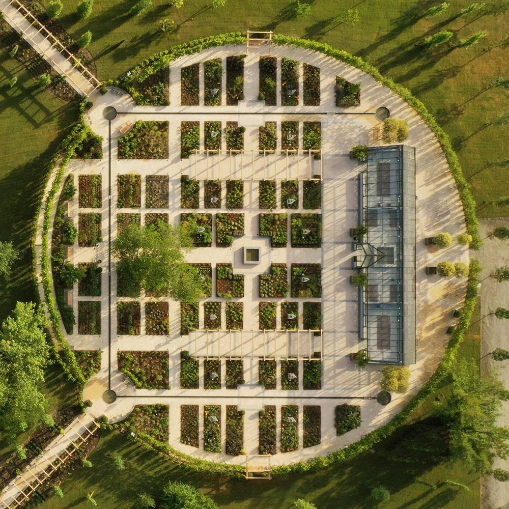 image of the davines scientific garden