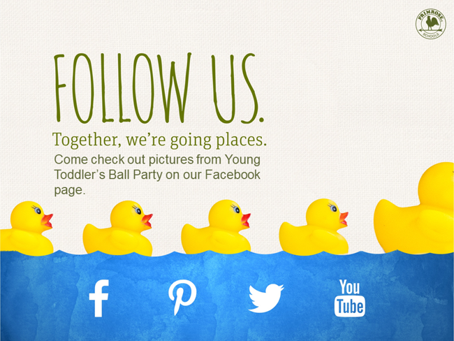 Plastic ducks in a row with social media icons below