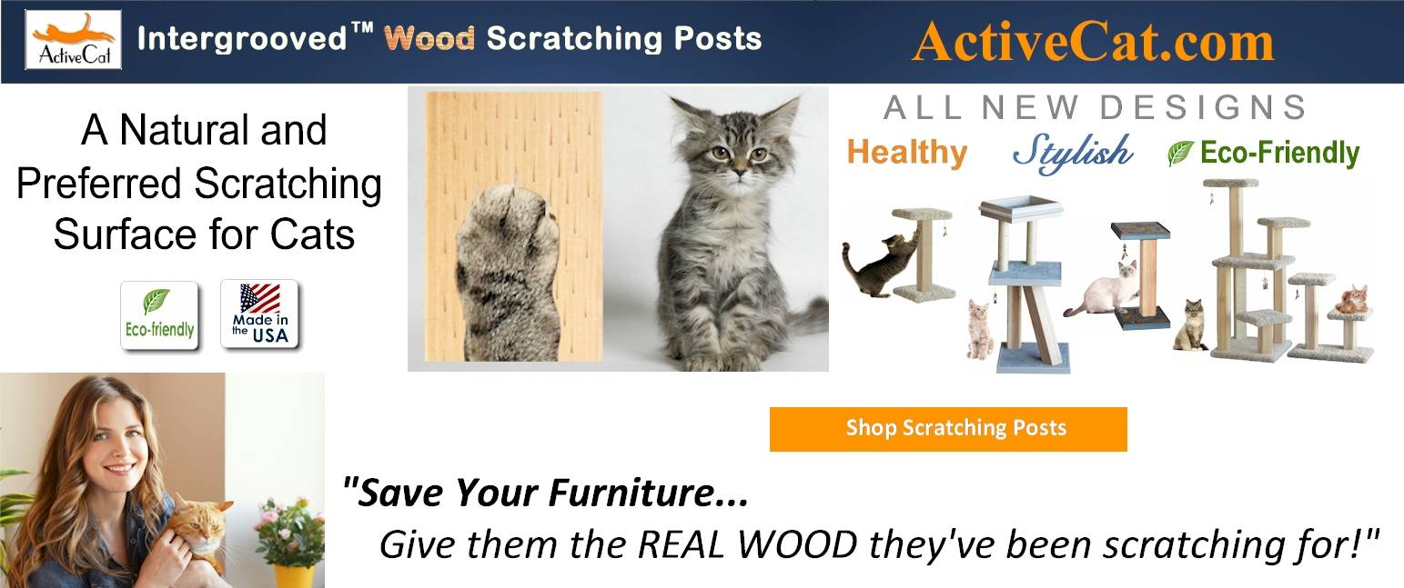 solid cedar wood cat trees and scratching posts