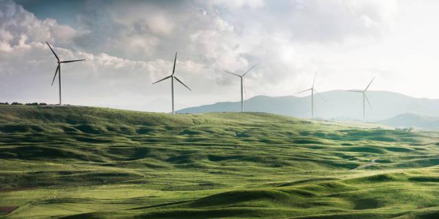 Jordkloden i en elpære der symboliserer vigtigheden af at investere bæredygtigt.