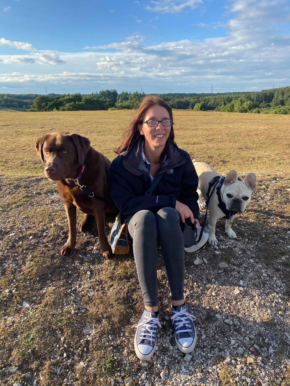 Travelling pet chocolate Labrador