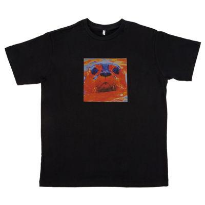 Camiseta Foca Luccas Neto