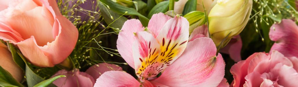 2-wekelijks bloemenabonnement