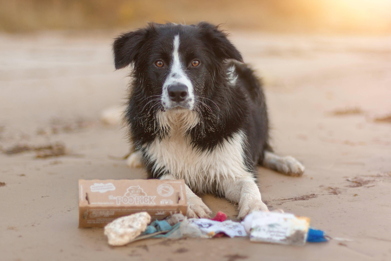 Umweltfreundliche Hundekotbeutel