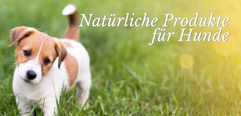 Naturheilmittel für Hunde