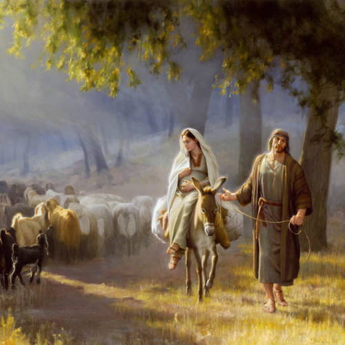 Joseph leading Mary on a donkey past a young boy's heard of sheep.
