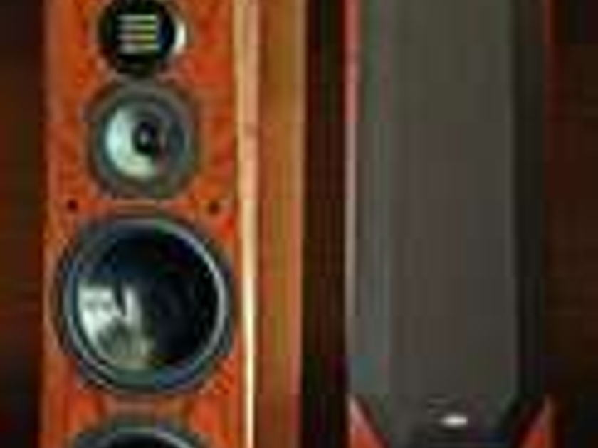 Legacy Audio Focus SE in rosewood Colo. pick-up