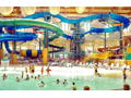 5 Passes to Great Wolf Lodge Indoor Water Park