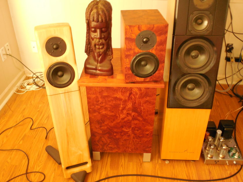 Custom 2 way monitors  Bubinga veneer Meadowlark Clones