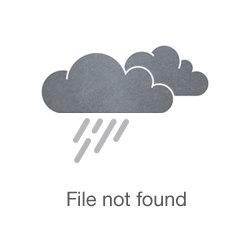 Dr. Gabriel Krenitsky