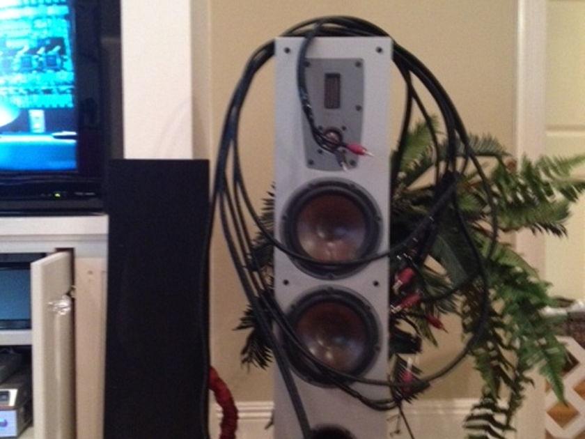 Audioquest Rocket 88 wDBS, Bi Wire 15 ft Pair