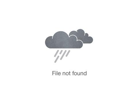 Hawaiian Five Oh Pizza