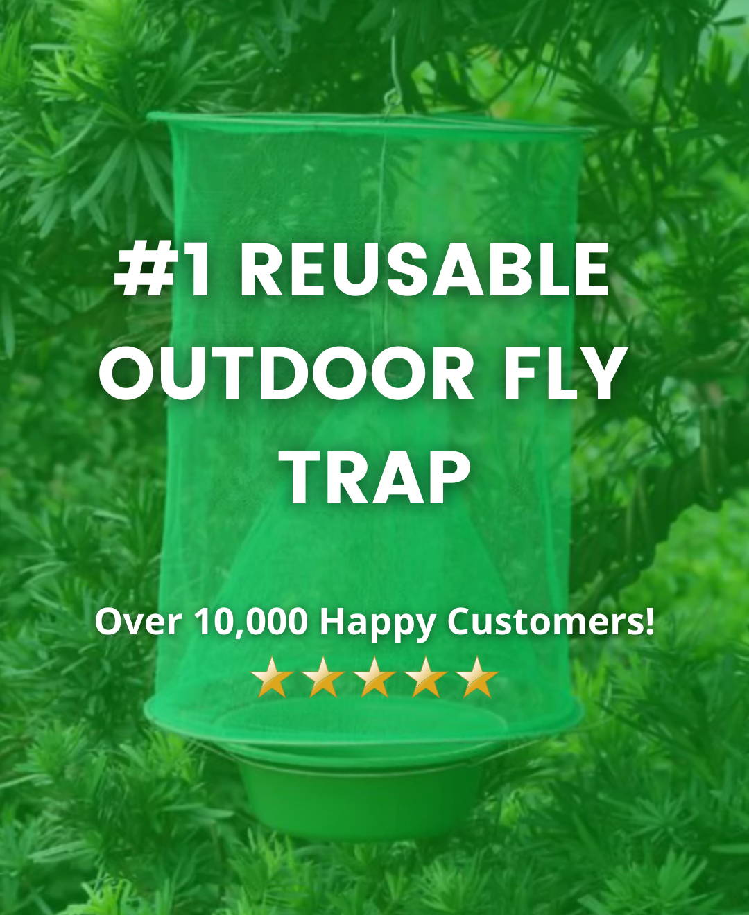Fly Trap for Outside