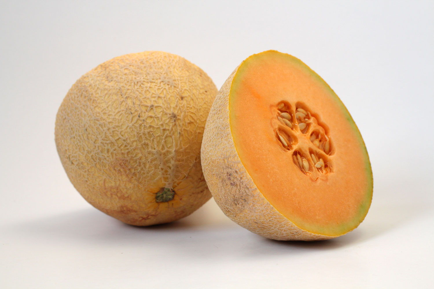 Cantaloupe - Souto Farms Fresh BC Fruit