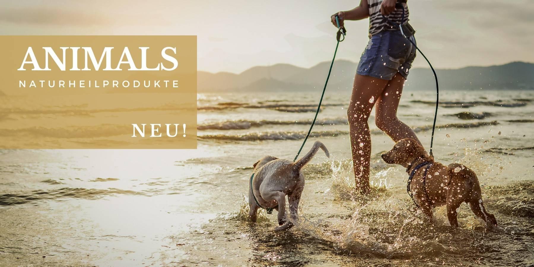 OSIRIUS® - ANIMALS - Naturheilmittel für Hunde, katzen, Vögel, Pferde, Haustiere, Tiere exklusiv mit Biopersonalisierung®