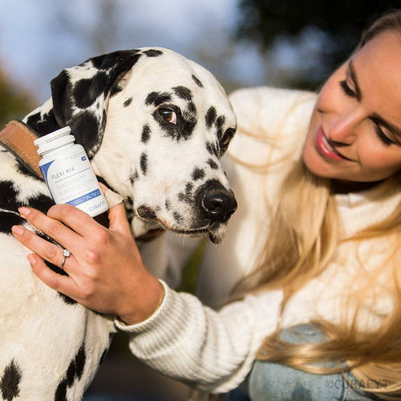 dalmatian dog with owner holding CURAFYT FLEXI MIX DOG in her hand