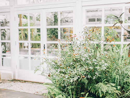 The conservatory: A year-round feel-good location surrounded by greenery