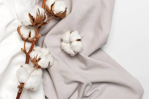 Cotton sheets with cotton bolls - Photo from Threadcurve